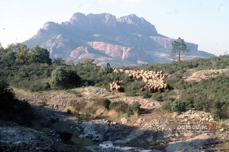 Rocher-Roquebrune