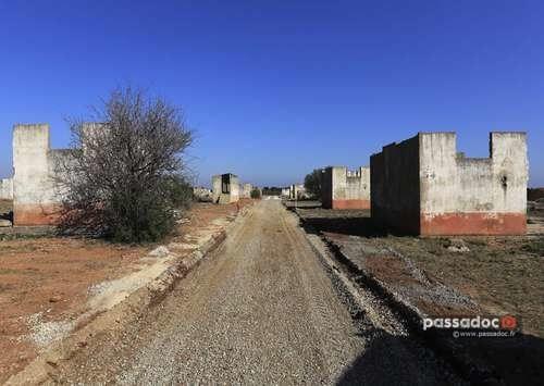 Barraquements au Camp de Rivesaltes - photo : Mémorial du Camp de Rivesaltes